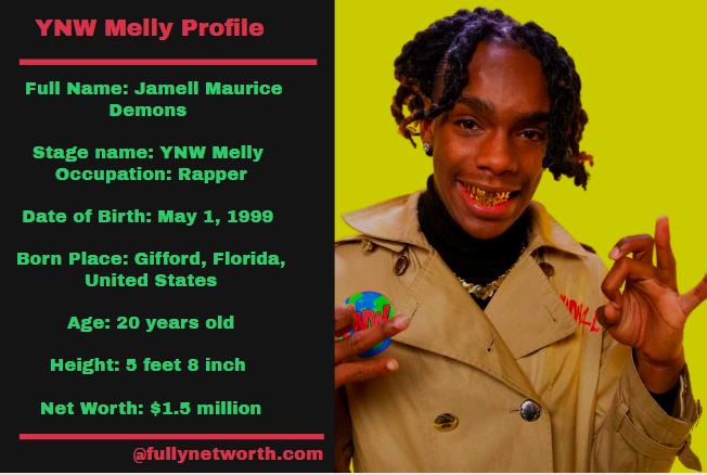 YNW Melly Net Worth: 5 Interesting Facts You Should Know